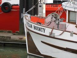#016 Ocean Bounty