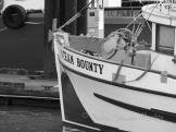 #017 Ocean Bounty B&W