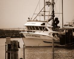#031 Enterprise