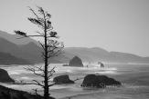 #067 Cannon Beach Wind Oregon