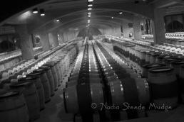 #078 Mondavi cellar