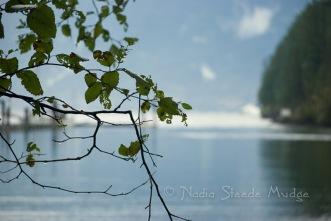 #095 Snug Cove
