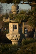 #102 Japanese Garden-1
