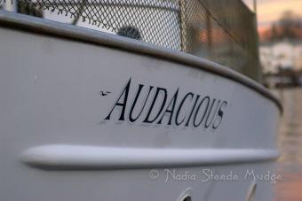 #181 (#150) Audacious