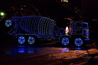 #234 Christmas Truck DSC_0133