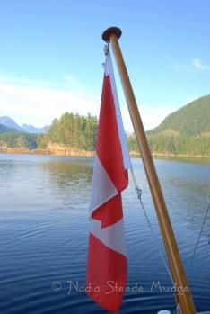#251 Isabelle Bay, Canada DSC_1320