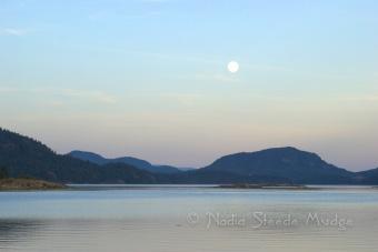 #256 Moonrise in Octopus Islands DSC_1630.NEF