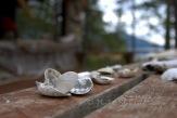 #262 Seashell gifts DSC_1714