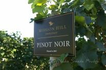 #295 Mission Hill pinot DSC_2460