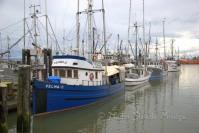 #335 Steveston Docks DSC_2957