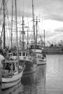 #336 Steveston Docks b&w DSC_2958