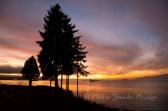 #349 English Bay Sunset _NAD0693