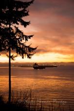 #350 English Bay Sunset II _NAD0702