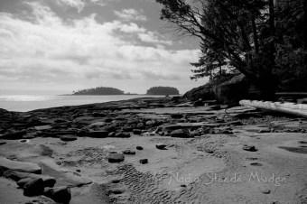Tugboat Island, BC